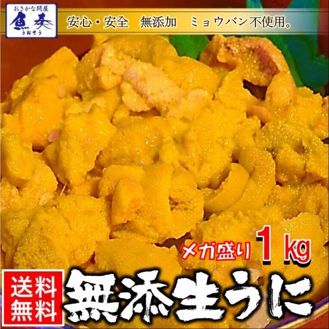 うに 雲丹 ウニ 冷凍生うに 無添加 1kg 100g×10パック ミョウバン不使用 安心・安全 うに丼 送料無料 チリ産