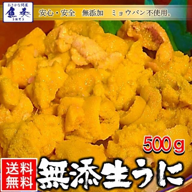 うに 雲丹 ウニ 冷凍生うに 無添加 500g 100g×5パック ミョウバン不使用 安心・安全 うに丼 送料無料 チリ産