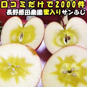 りんご 蜜入り サンふじ 口コミ2000件 噂の 蜜入りりんご サンフジ 長野 信州 原田農園 3kg 6〜12玉 お歳暮 贈答用 送料無料