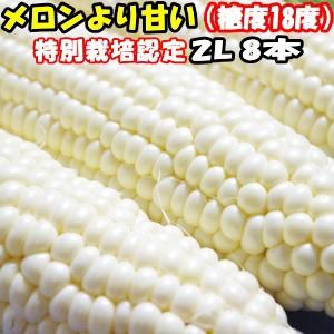 とうもろこし 北海道 甘い メロンより甘い 安心の特別栽培認定 生で食べれる 白い トウモロコシ 平均糖度18度 ホワイトショコラ 8本入 北