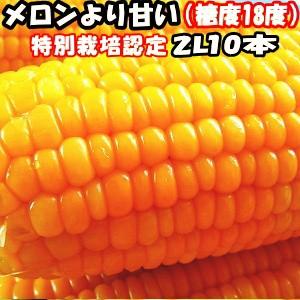 とうもろこし 北海道 甘い メロンより甘い 安心の特別栽培認定 生で食べれるとうもろこし 平均糖度18度 夢のコーン 2Lサイズ 10本入 北海