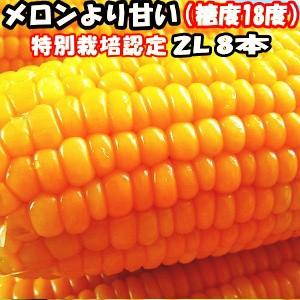 出荷中 とうもろこし 北海道 甘い メロンより甘い 安心の特別栽培認定 朝どれ 生で食べれる トウモロコシ 平均糖度18度 夢のコーン わく