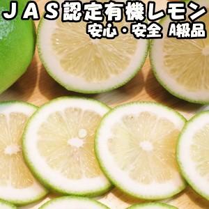 レモン 無農薬 3kg A品 国産 有機 JAS認証 転換期間中 皮まで食べれる 佐賀 佐藤農場 レモン