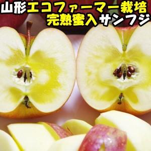 りんご 蜜入り ふじ サンふじ 糖度 減農薬 エコファーマー 完熟 蜜 リンゴ サンフジ 山形 太田農園 蜜入りりんご 3kg 8〜11玉 お歳暮 贈