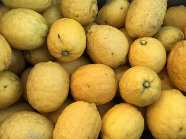 国産レモン無農薬5kg