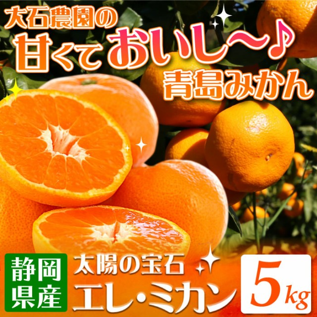 【順次出荷】糖分・酸味とも多く濃厚な風味 静岡県産みかんの定番 青島みかん 5kg ミカン 蜜柑 みかん エレ・ミカン 送料無料