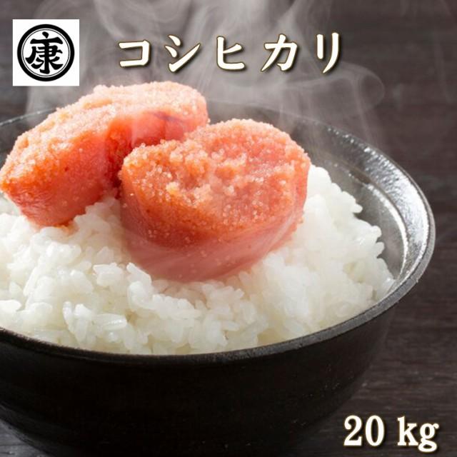 令和元年産新米 千葉県産 コシヒカリ 一等米 玄米 20kg 小分け無料 精米無料 つきたて発送