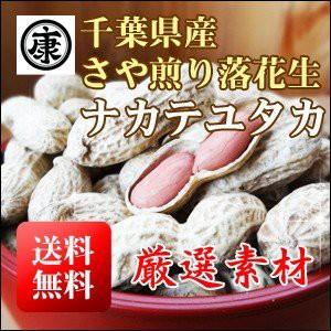 千葉県産落花生 令和元年産 ナカテユタカ殻付き 500g(250g×2袋)