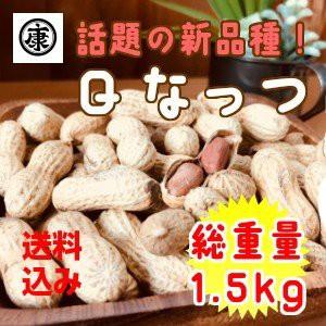 千葉県産落花生 令和元年産 殻付き Qなっつ 1.5kg 500g×3袋
