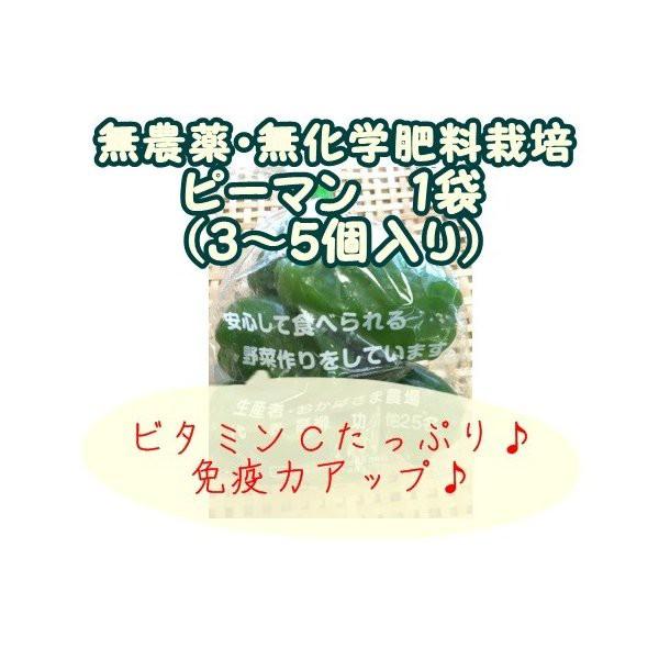 ピーマン 『無農薬・無化学肥料栽培』 千葉県成田市おかげさま農場産
