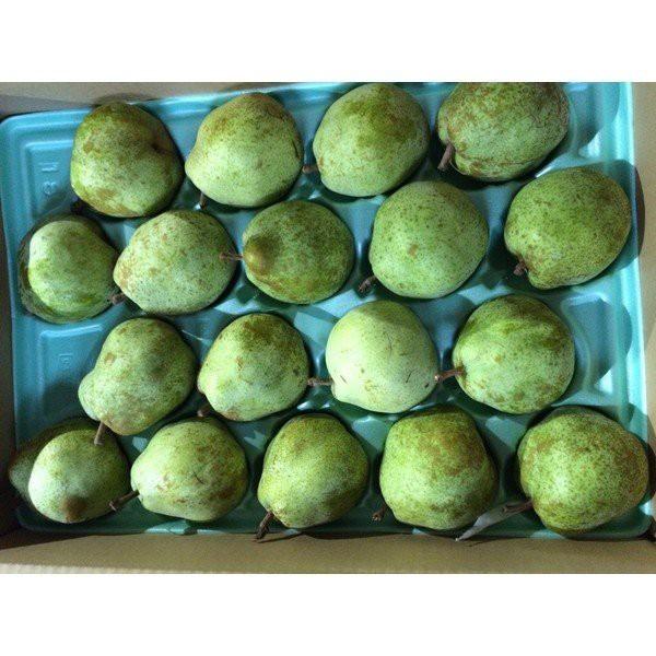 ラ・フランス 5キロ箱 18玉から20玉 中玉サイズ 山形県産 洋梨 らふらんす ラフランス