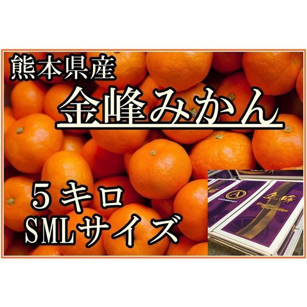 秀品限定 金峰みかん 早生 5kg化粧箱 SML 熊本県産のブランドみかん お取り寄せフルーツ ギフト 美味しい 御歳暮 箱買い