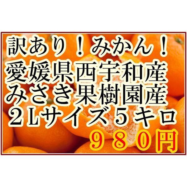 みかん 2Lサイズ 5kg箱 みさき果樹園産 愛媛県西宇和産 訳あり わけあり ワケアリ 箱買い