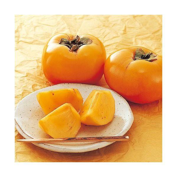 刀根柿 奈良県産 Lサイズ中大玉 4キロ箱 ご贈答用に最適です♪ 種なし柿