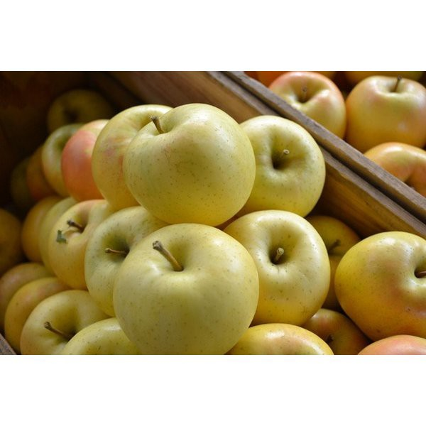 送料無料  トキりんご 14玉〜16玉(大玉) 5キロ箱 りんご 青森県産 トキりんご ときりんご