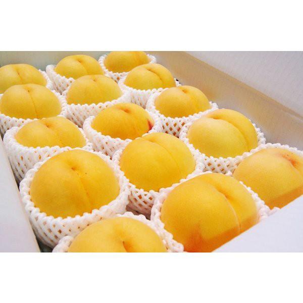 桃(黄金桃) 13玉15玉16玉 5キロ正箱 山梨県産 最高級品 お中元 ご贈答用に最適です♪ 黄金桃