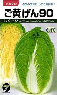 タカヤマシード ハクサイ 白菜 CRご黄げん90 小袋