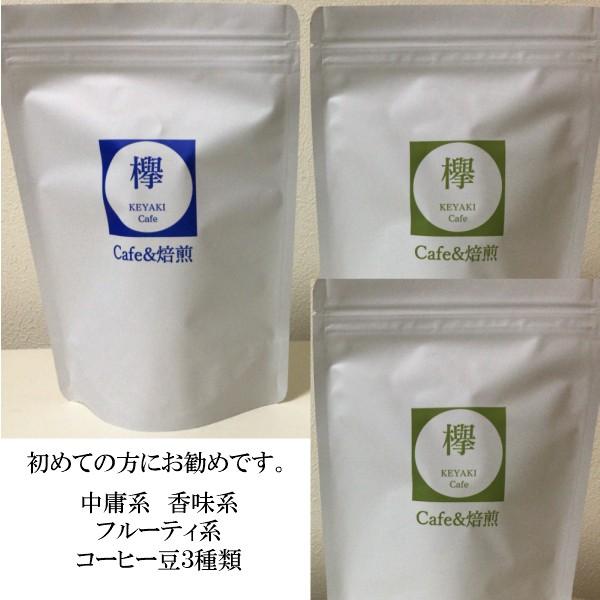 夏季限定価格 コーヒー豆 マンデリン モカ ブラジル 初めての方にお勧め お試しセット 各100g(合計300g)約30杯分