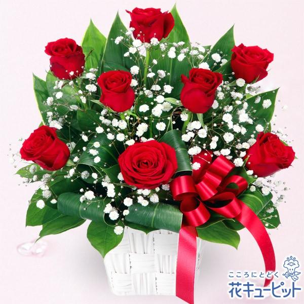 【開店祝い・開業祝い】 花キューピットの赤バラのリボンアレンジメント 花 ギフト お祝い プレゼントyf00-511764
