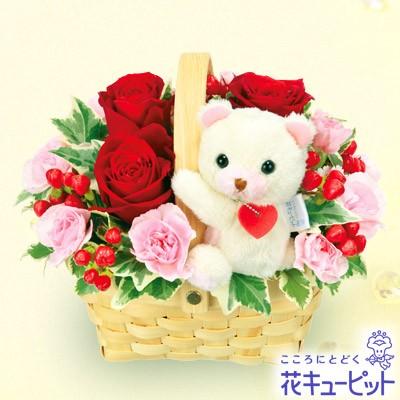 【誕生日フラワーギフト】 花キューピットのくまのマスコット付きアレンジメント 花 ギフト 誕生日 プレゼントya00-511775