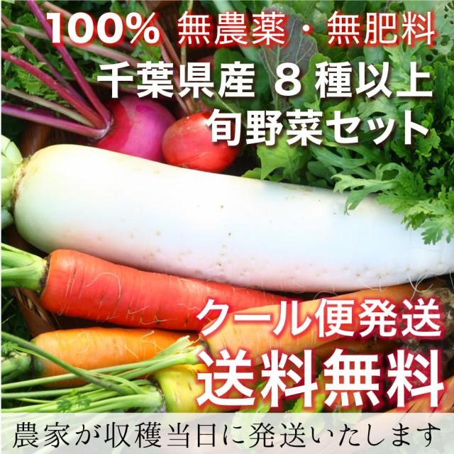 【無農薬・無肥料】有機栽培とは異なる「自然栽培」旬野菜セット【送料無料(送料込み) 産地直送 収穫当日発送】