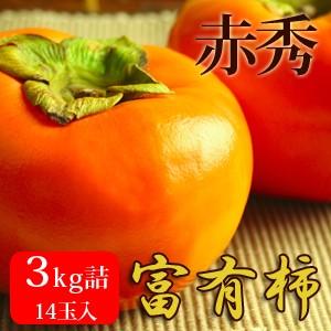 富有柿3kg詰(14玉入) 鳥取県産 赤秀 送料無料(北海道・沖縄を除く)