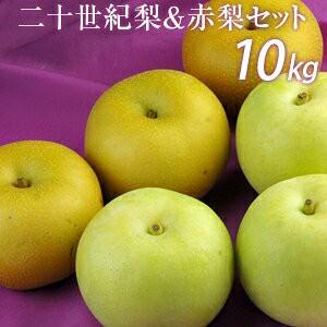 二十世紀梨&赤梨セット10kg詰(25玉前後入) 鳥取県産 赤秀 送料無料(北海道・沖縄を除く)