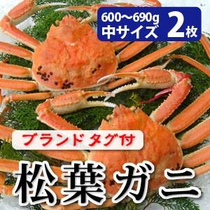 松葉がに600〜690g(中サイズ)×2枚 日本海産 未冷凍 お歳暮ギフト 送料無料(北海道・沖縄を除く)
