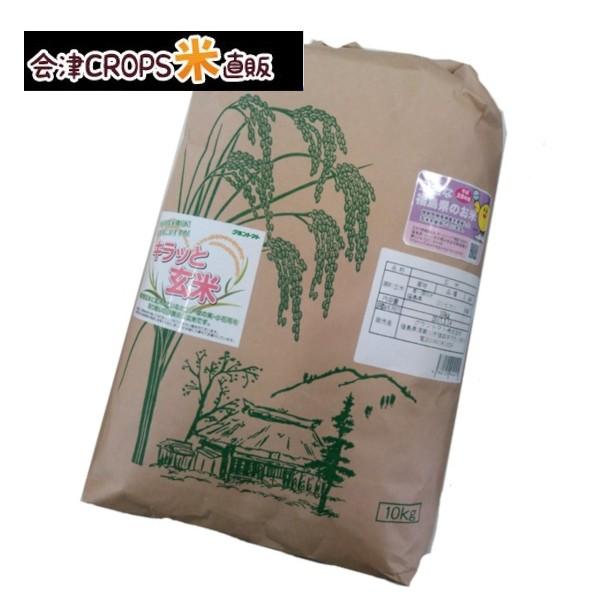 コシヒカリ 玄米10kg 令和二年産 福島県産 調整済玄米 送料無料 通常発送 ※沖縄・その他離島は別途送料追加