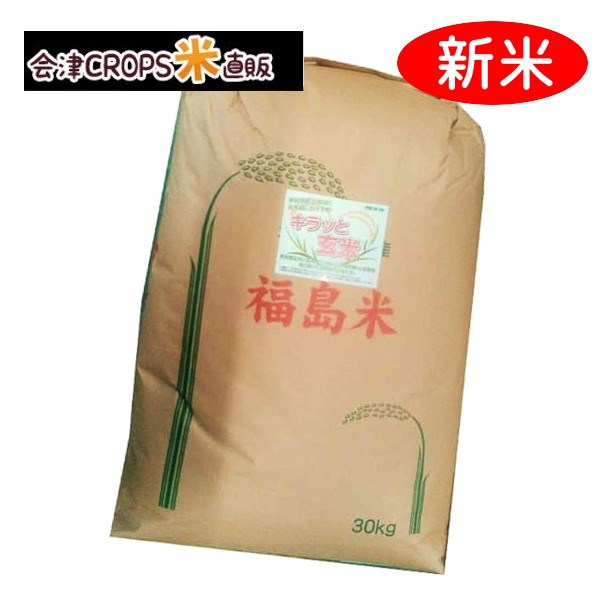 コシヒカリ 30kg(30kg×1) お米 玄米 令和二年 福島県産 送料無料 ※沖縄・その他離島は別途送料追加