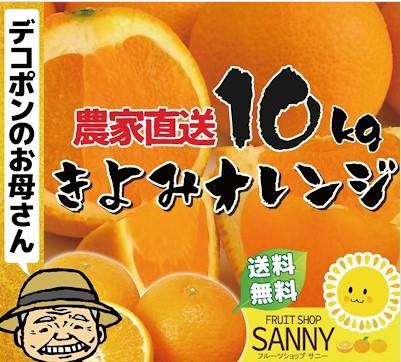 訳あり 清美オレンジ10kg せとかやデコポンの原点になったミカン界の革命児愛媛産