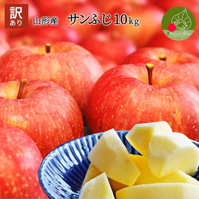 【 訳あり 】 りんご 10kg 山形県産 サンつがる 早生ふじ サンふじ 産地直送りんご お徳用 林檎 [ 家族みんなで ] サイズ