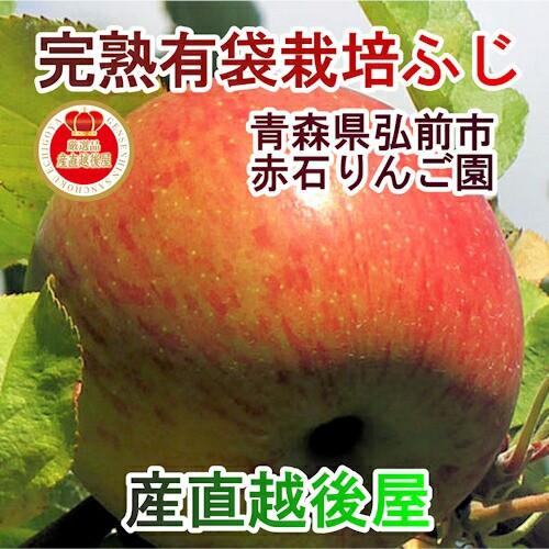 【フルーツ りんご 青森りんご 送料無料】 青森県弘前市 赤石りんご園 有袋栽培ふじ 2.5kg(7玉〜10玉) 収穫時の鮮度を保つCA貯蔵りん