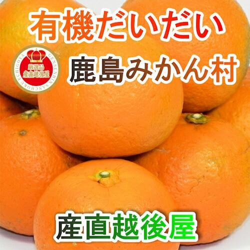 【フルーツ みかん 有機栽培だいだい】 佐賀県 鹿島市 有機みかん佐藤農場 有機栽培 だいだい 9kg 採りたてを農園から産地直送 送料無料