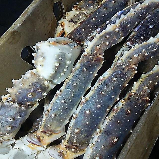 タラバガニ たらば蟹 生タラバガニ king crab sections 2kg 5Lサイズ 殻付 約2肩 化粧箱