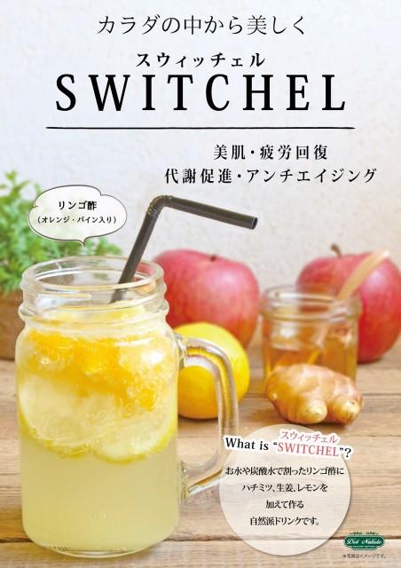 スウィッチェル リンゴ酢 10食セット