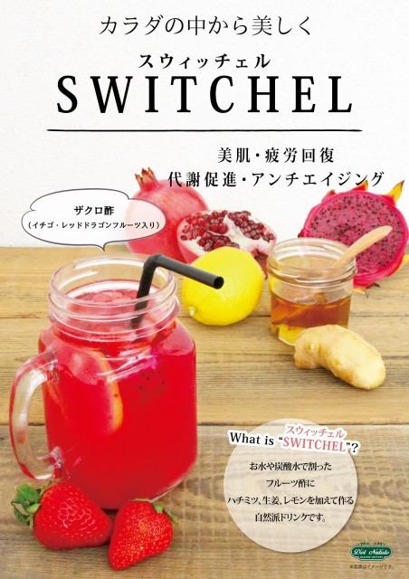 スウィッチェル ザクロ酢 10食セット