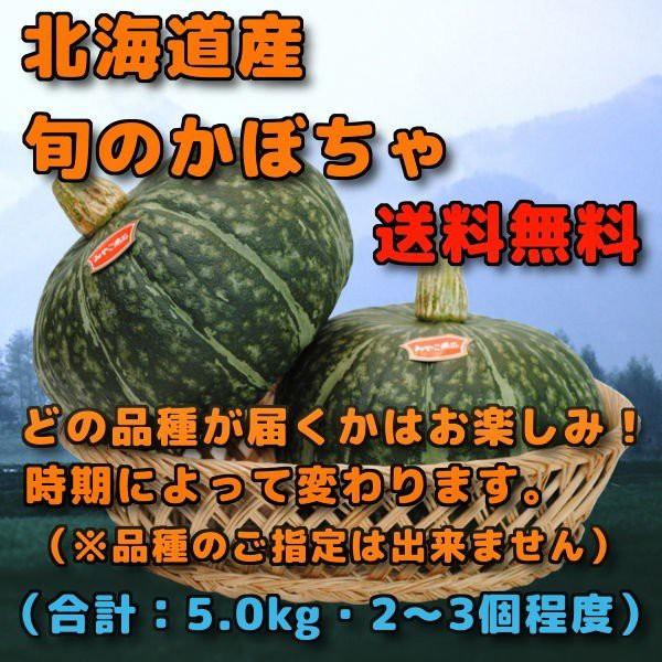 北海道産 かぼちゃ 合計 5kg 前後 2個から3個程度 みやこ、えびす、ほっこり、雪化粧、味平などのいずれか1品種 ※時期によってどの品種
