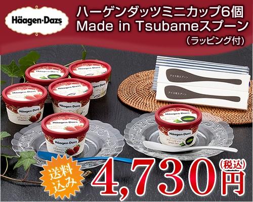 (アイス ギフト) ハーゲンダッツ ミニカップ6個&Made in TSUBAMEアイススプーン2個セット(送料込)(ラッピング付)