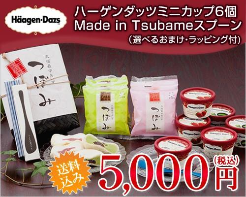 (アイス ギフト) ハーゲンダッツ ミニカップ6個&つぼみ6個&Made in TSUBAMEアイススプーンセット(送料込)(ラッピング付)