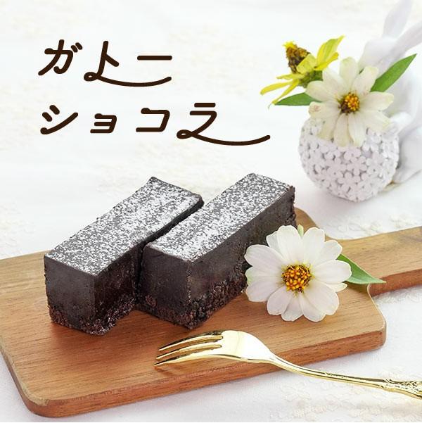 春雪さぶーる ガトーショコラ 国産 チョコ ケーキ スイーツ お菓子