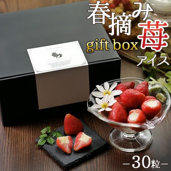 送料無料(一部地域を除く) スイーツ アイス 春摘み苺アイス ギフトボックス (30粒)
