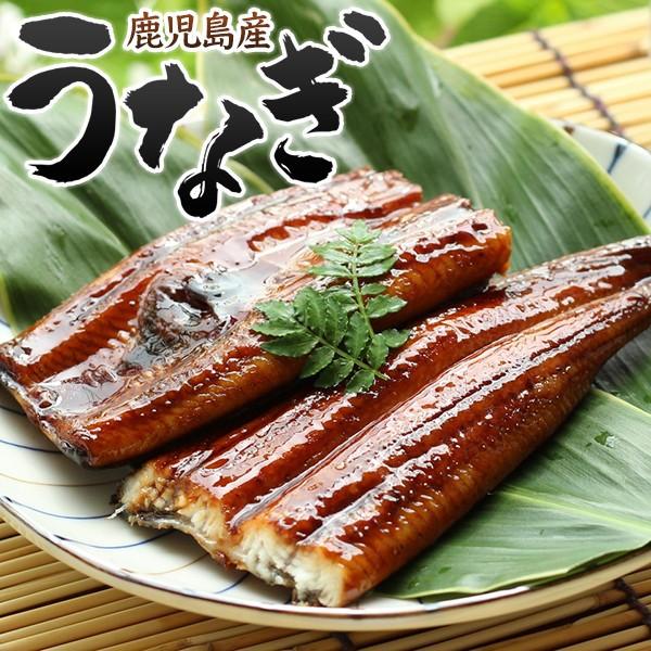 国産 鹿児島 うなぎ 蒲焼き 真空パック 鰻 ウナギ ひつまぶし
