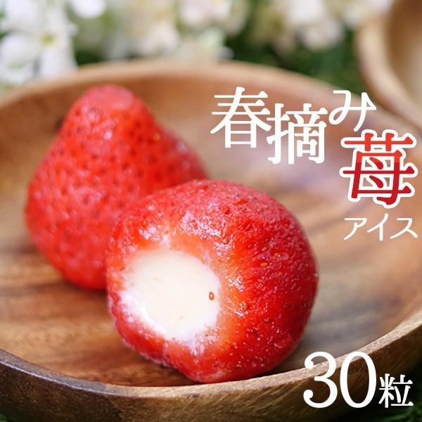 送料無料(一部地域を除く) アイス 春摘み苺アイス (30粒)