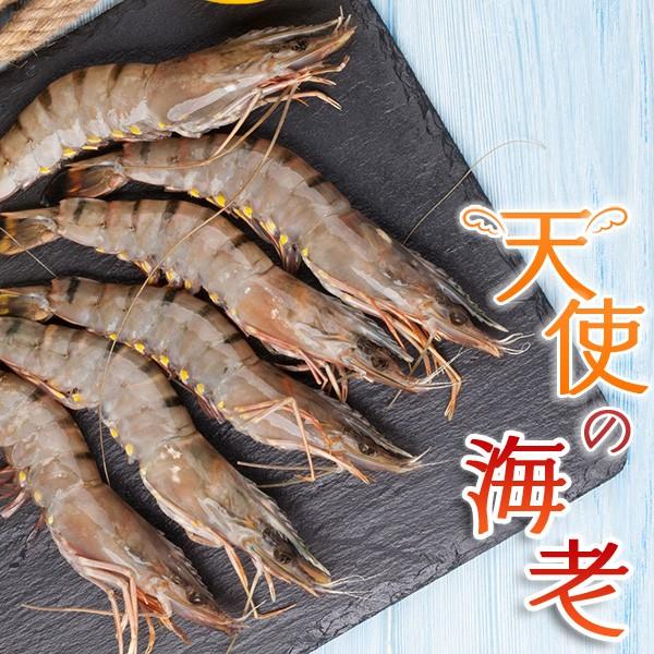 冷凍鮮魚 天使の海老 エビ 業務用 えび 海老 ギフト 家庭用