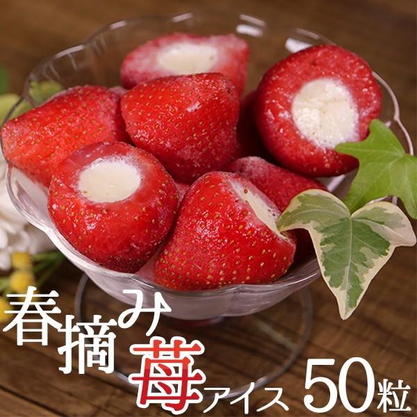 スイーツ 苺 春摘み苺アイス (50粒) お菓子 アイスクリーム