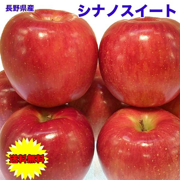 りんご 5kg 訳あり 長野県 シナノスイート 5kg 14〜20個 ご家庭用 送料無料 訳あり お試し りんご シナノスィート お歳暮 ギフト