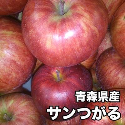 りんご 訳あり 10kg 青森県産 サンつがる 10kg サイズいろいろ 送料無料