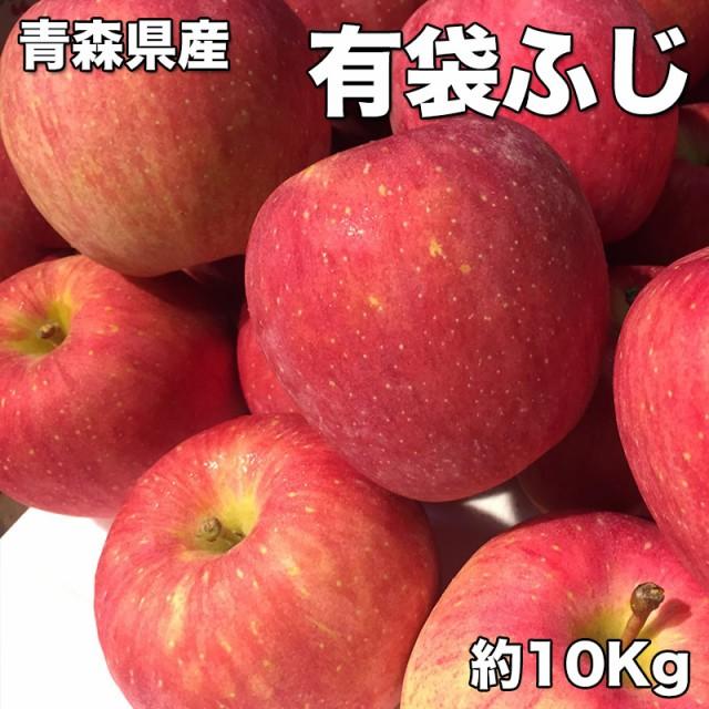 りんご 訳あり クール便 送料無料 青森県産 有袋 ふじ りんご 10kg 糖度保証 サイズいろいろ クール便配送 CA貯蔵