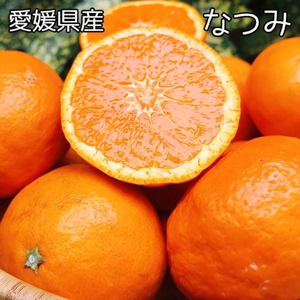 みかん 訳あり なつみ 送料無料 愛媛県 なつみ Lサイズ 5kg みかん お試し 夏に食べるみかん